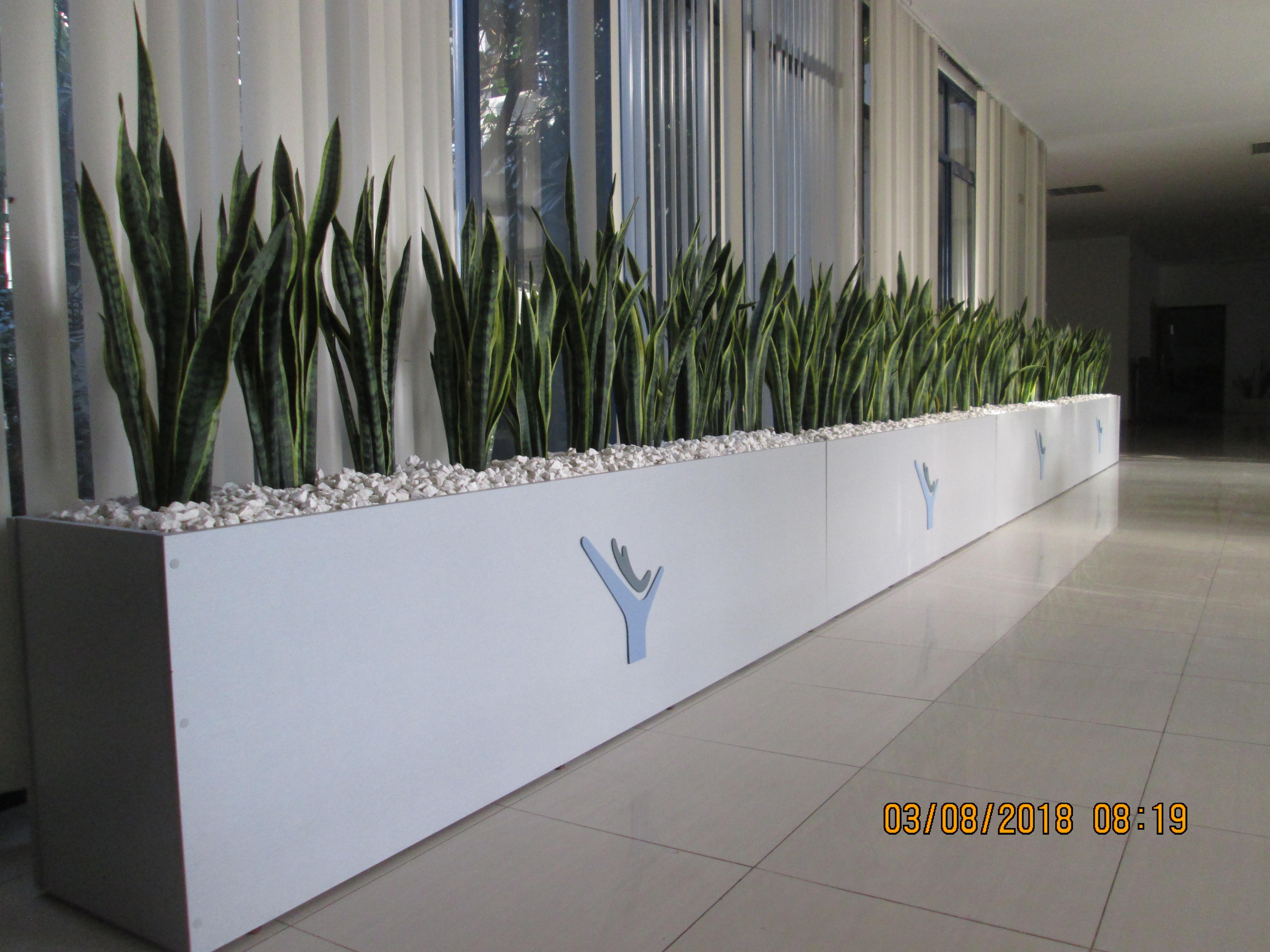 Amplias y renovadas instalaciones